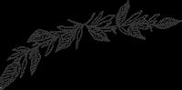"""【通知】关于举办2017年广西""""书香校园·阅读圆梦""""网络征文评选活动的通知"""