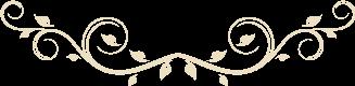 我院举行2015级护理学专业学生授帽仪式暨第十一届护理技能操作大赛表彰大会