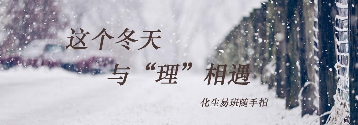 """这个冬天与""""理""""相遇――随手拍"""